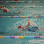 festival-natação